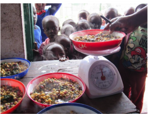 Measuring the typical serving of githeri: we do this so that we can estimate the amount of nutrients in a typical child's serving.