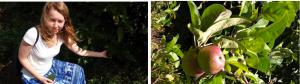 Michaela enjoying the shade from an Avocado tree Apples