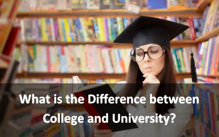 What's the Difference Between a College and a University?