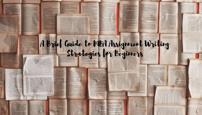 A Brief Guide to MBA Assignment Writing Strategies for Beginners