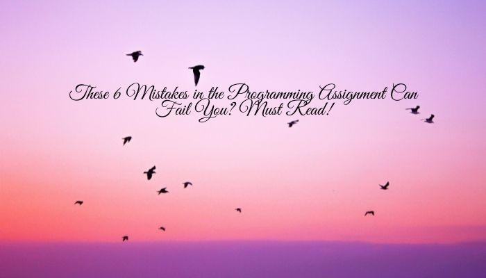 These 6 Mistakes in the Programming Assignment Can Fail You? Must Read!